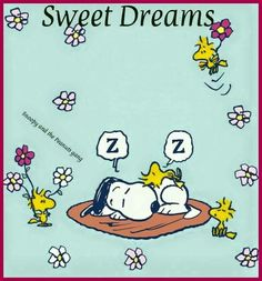 Sweet Dreams - Snoopy and Woodstock Sleeping in a Mat With Woodstock's Friends Flying Nearby Holding Flowers