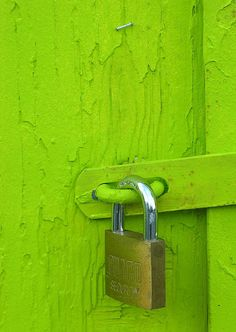 lime green door and lock Bright Green, Go Green, Green Colors, Chartreuse Color, Orange Pastel, Color Verde Claro, Gazebos, World Of Color, Shades Of Green