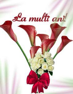 Happy Birthday, Plants, Weddings, Facebook, Pictures, Happy Brithday, Urari La Multi Ani, Wedding, Happy Birthday Funny