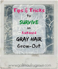 Gallimaufry Grove: Tips & Tricks to Survive a Gray Hair Grow Out (complete with pictures)