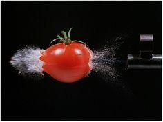 durchschossene Tomate von Hans Schlueter