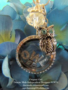 Do you LOVE Owls?  You will love ORIGAMI OWL Lockets to showcase your Owl LOVE {0v0}