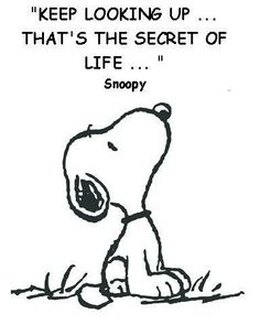 """75 Short Quotes - """"Keep looking up.that's the secret of life."""" - Snoopy # short Quotes 75 Short Quotes About Life, Love, Inspiration, and the Pursuit of Happiness Look Up Quotes, Life Is Too Short Quotes, Smile Quotes, New Quotes, Happy Quotes, Positive Quotes, Funny Quotes, Inspirational Quotes, Happiness Quotes"""