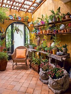 The residentso fond of plants that was not content to have them only in the garden. He asked for the landscaper Michelle Simoncello Boccalato transform the entrance of the house into orchidarium. The transparent tiles brighten the space. Outdoor Rooms, Outdoor Gardens, Outdoor Living, Outdoor Decor, Outdoor Ideas, Patio Ideas, Garden Ideas, Dream Garden, Home And Garden
