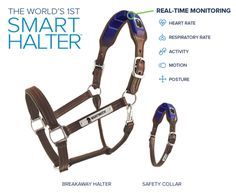 Night Watch What does it do? The head collar monitors heart rate, respiratory rate, activity, motion and posture. It features a b...