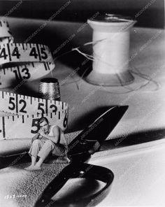photo Grant Williams sci-fi classic film The Incredible Shrinking Man 1292-05