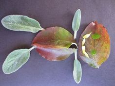 Nature Collage Kids Craft Art Activity - Leaf people are always fun to make. And leaf animals.