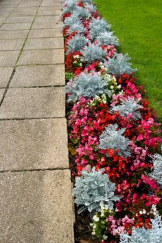 I want to do something similar to this along my walkway with different flowers. Very beautiful.