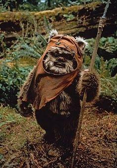 Or an Ewok: | 27 DIY Costume Ideas For Your Pet - Ewok