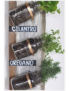 If you love to bring the outdoors in, then take a stab at this hanging herb garden #masonjars