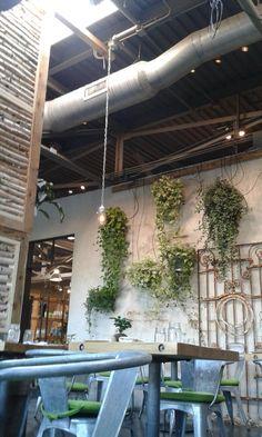 Reserve a table at Terrain Garden Cafe, Westport on TripAdvisor: See 92 unbiased reviews of Terrain Garden Cafe, rated 4 of 5 on TripAdvisor and ranked #16 of 161 restaurants in Westport.