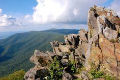 16 Out-Of-This-World Hiking Spots In Virginia That Will Leave You In Awe