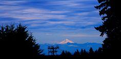 Bald Peak State Park, Newberg, Oregon Portland, Vancouver, Newberg Oregon, Hillsboro Oregon, Grape Vineyard, Salem, Oregon City, Willamette Valley, Close To Home