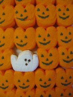 Halloween Inspo, Halloween Snacks, Halloween Season, Holidays Halloween, Vintage Halloween, Happy Halloween, Halloween Party, Halloween Decorations, Halloween Peeps