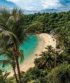 Playa Carrizalillo, Puerto Escondido, Mexico - Best Places to Travel in 2014   Travel + Leisure