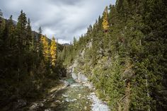 Langzeitbelichtung Spöltal Schweizer Nationalpark