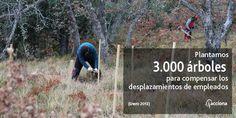 La compañía, en colaboración con la Fundación Oso Pardo, planta más de 3.000 frutales para contribuir a la alimentación de esta especie en peligro de extinción en su hábitat natural.  Esta iniciativa surge del compromiso de ACCIONA de plantar un árbol por cada trabajador que informara de las emisiones de CO2 generadas en sus desplazamientos de casa al trabajo.