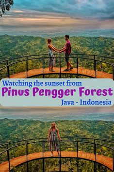 Find out the best photo spots in Pinus Pengger forest at sunset (Yogyakarta - Java - Indonesia)... | Pinus Pengger | Pinus Pengger Hutan | Pinus Pengger Yogyakarta | Yogyakarta Photography | Yogyakarta Hutan Pinus | Yogyakarta Travel | Yogyakarta Indonesia | Yogyakarta Photography Night | Yogyakarta Sunset | Java Indonesia | Java Indonesia Photography | Java Indonesia Travel | Java Indonesia Yogyakarta | Jogjakarta Travel | Yogyakarta Travel Photography | Indonesia Sunset | Indonesia…