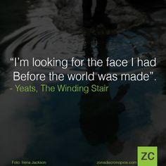 Sí, yo también di con esta cita gracias a Borges.