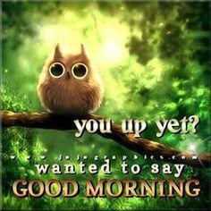 good morning Pinterest  2-12-2014
