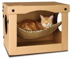 SnoozePal Cat Hammock in a box is the best cat bed for those finicky cats that love boxes Diy Jouet Pour Chat, Cardboard Cat House, Cardboard Boxes, Cardboard Storage, Cardboard Furniture, Diy Cat Toys, Homemade Cat Toys, Cat Hammock, Hammock Ideas