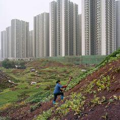 Metamorpolis by Tim Franco (918PH) — Atlas of Places City Landscape, Landscape Photos, Three Gorges Dam, City Farm, Extreme Close Up, Chongqing, Urban Life, City Streets, Photojournalism