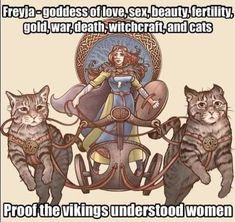 Norse Pagan, Norse Mythology, Fantasy Creatures, Mythical Creatures, Vikings, Viking Life, Asatru, Goddess Of Love, History Memes