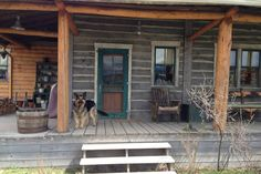 Amber's Shepherd, Remi, on the Heartland ranch house set