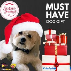 Must Have Gift For Your Dog: Wisdom Panel® 3.0 DNA Test #AD @wisdompanel