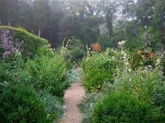 Imagini pentru hampton perennial garden