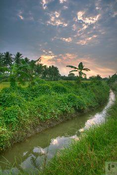 Shot in a remote village near Thanjavur, Tamil Nadu - India