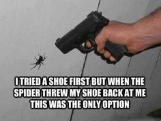 Scared of spiders? Maybe score Australia off your bucket list. Funny Quotes About Life, Life Quotes, Daily Quotes, Gun Quotes, Humorous Quotes, Sarcastic Humor, Sarcasm, Love Memes, Funny Memes