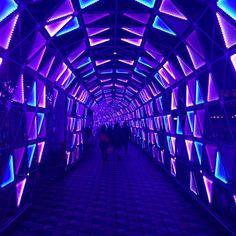 Tokyo Dome Neon