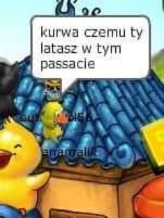 Learn Polish, Reaction Pictures, Panda, Things To Think About, Lol, Entertaining, Humor, Feelings, Memes