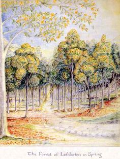 Crayon drawing by J.R.R. Tolkien of the mallorn trees of Lothlorien; cf. The Fellowship of the Ring, Book II, Chapter 6:    'There are no trees like the trees of that land. For in the autumn their leaves fall not, but turn to gold. Not till the spring comes and the new green opens do they fall, and then the boughs are laden with yellow flowers; and the floor of the wood is golden, and golden is the roof, and its pillars are of silver, for the bark of the trees is smooth and grey.'