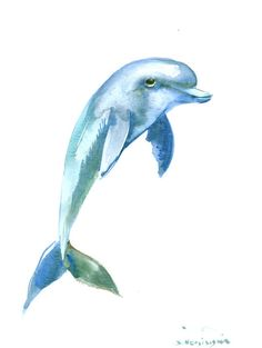 Dolphin Painting original watercolor painting 12 X 9 in sea world animal art (25.00 USD) by ORIGINALONLY