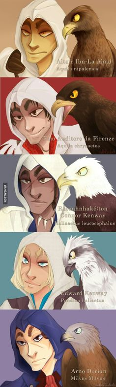 Assassins Creed. Altïar with a Steppe Eagle, Ezio with a Golden Eagle,Conner with a Bald Eagle, Edward with an Osprey, and Arno with a Red Kite.