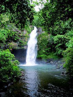 Fiji is my dream vacation. Fiji for First Timers: How to Choose an Island Tahiti, Bora Bora, Fiji Honeymoon, Honeymoon Destinations, Holiday Destinations, Dream Vacations, Vacation Spots, Italy Vacation, Vacation Ideas