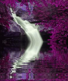 Animated Landscape, Animated Graphics, Beautiful Landscapes, Nature, Keefers photo Keefers_AnimatedLandscapes.gif