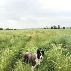 Aptly titled 'Summer Idyll' - there's a new post on the blog today to celebrate the start of July and hopefully the (slightly delayed) start of summer. We're hoping it will inspire you all to get outdoors and make the most of it like our friend Jess here