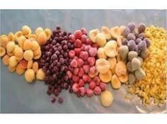 Global IQF Products Market Professional Survey Report 2016