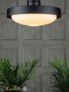 With its 'out of this world' look, this ceiling light could be perfect for your interior. The black frame is held in place by the acrylic shade. Wall Lights, Ceiling Lights, Flush Lighting, Flying Saucer, Lighting Online, Out Of This World, Your Design, Frame, Interior