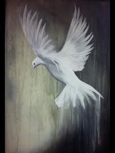 Dove painting Messenger of Peace by SharlaBafiaArtistry on Etsy This one is sold but, more sizes are now available on Etsy stop by and visit my shop ☺️