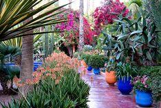 Les jardins Majorelle - Meilleurs places à visitez au Maroc
