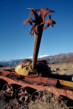 "Afghanistan War. ""Tank Orchid"" blooms in the desert"
