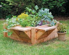 Raised Bed Designs for Gardening Tips Advice and Ideas: Discover raised bed designs for gardening, from projects that require woodworking skills to raised beds made from kits and upcycled items Raised Garden Bed Plans, Raised Beds, Container Gardening, Gardening Tips, Gardening Quotes, Succulent Gardening, Raised Planter, Vegetable Garden Design, Garden Pests