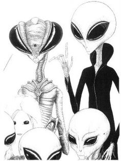 "David Jacobs: ""The Mantis Beings Are The Real Aliens, and they have created the greys"". Types Of Aliens, Aliens And Ufos, Ancient Aliens, Spaceship Drawing, Ancient Astronaut Theory, Planet Drawing, Alien Drawings, Grey Alien, Alien Art"
