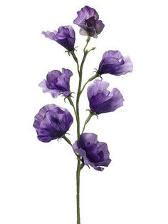 "Sweet Pea Silk Flower Spray in Dark Lavender 22"" Tall"
