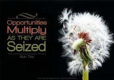 Opportunities multiply as they are seized - Sun Tzu