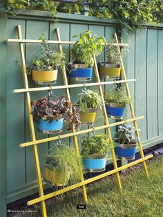 What a great idea for a verticle herb garden using a trellis, buckets and S hooks.